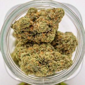 buy weed online. Humboldt Bud Company. gorilla glue #4