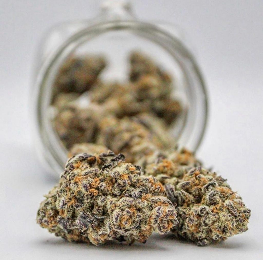 buy quality weed online. Humboldt County Farms. Humboldt Bud Company.