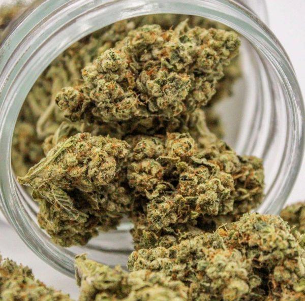 weed for sale. cali og. buy weed online. humboldt bud company