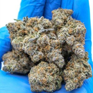 buy weed online. buy Indica weed. Mazar I Sharif. Humboldt Bud Company