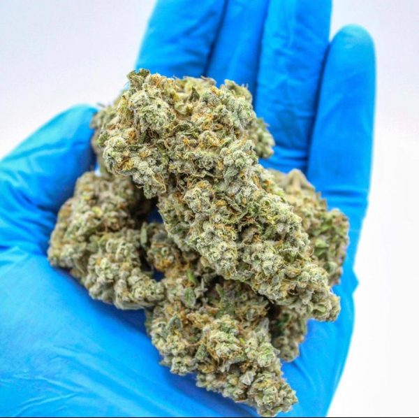 buy weed online. Humboldt County Farms. Platinum strawberry kush.