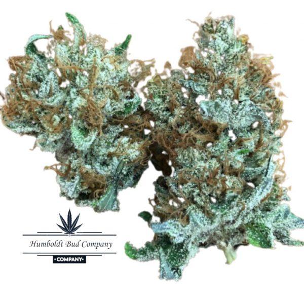 black mamba weed strain