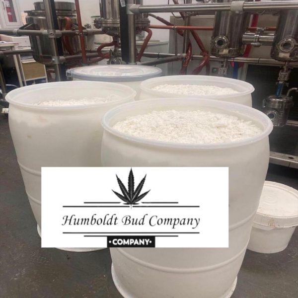 cbd isolate in bulk